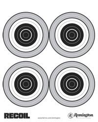 2978 Bullseye Targeet