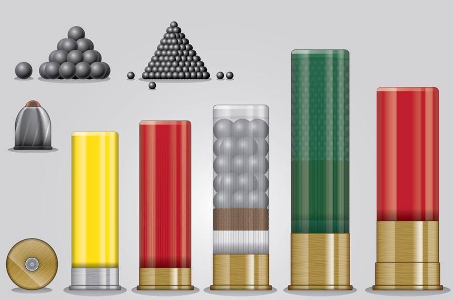 Патроны к гладкоствольному ружью могут быть разных размеров и содержать различные поражающие элементы