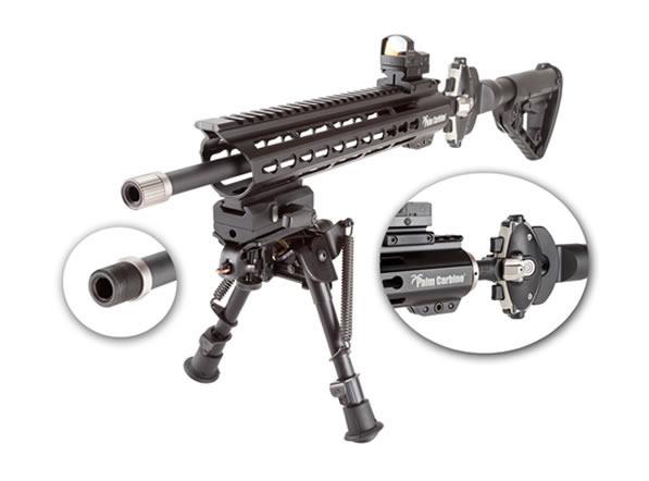 palm carbine