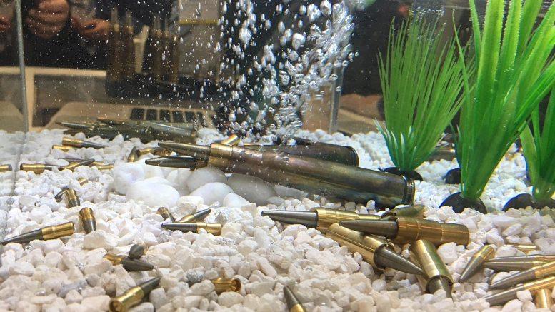 cav-x-swimming-bullets